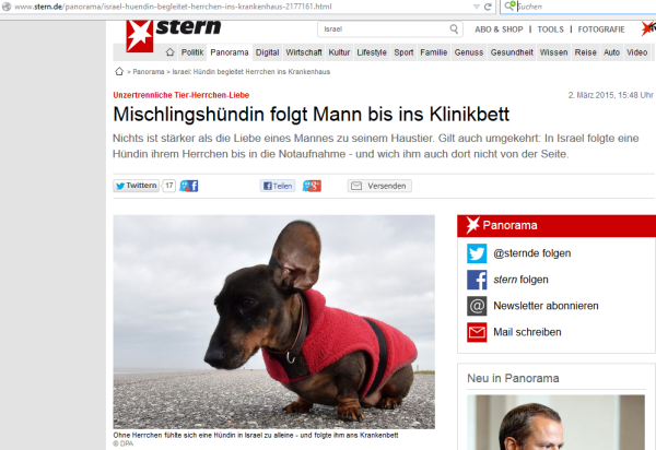 'Bildangebot' auf stern.de
